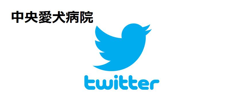 中央愛犬病院 twitter